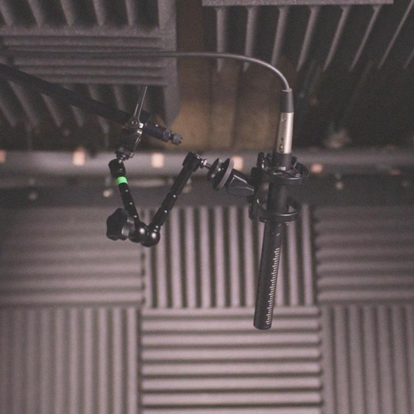 Renta de Audio